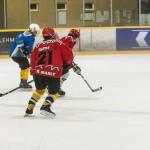 DSC_1230Hockeymatch MGAP